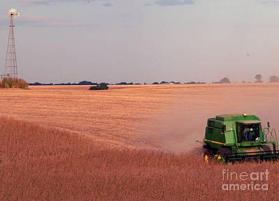 Photograph - Harvesting Iowa Beans by David Bearden