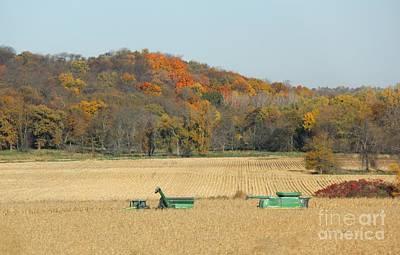 Harvesting Iowa Corn  Art Print