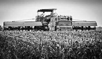 Art Print featuring the photograph Harvesting Time by Ricky L Jones