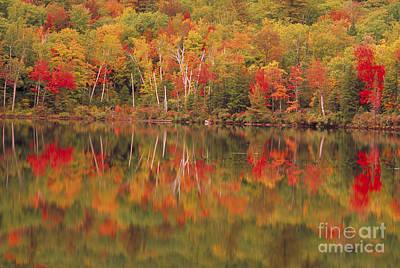 Photograph - Harvey Pond. Madrid, Maine by George Ranalli