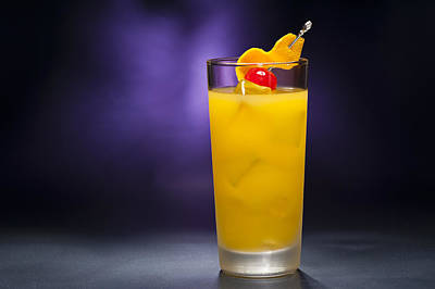Photograph - Harvey Wallbanger  by U Schade