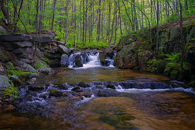 Photograph - Haskell River by Darylann Leonard Photography
