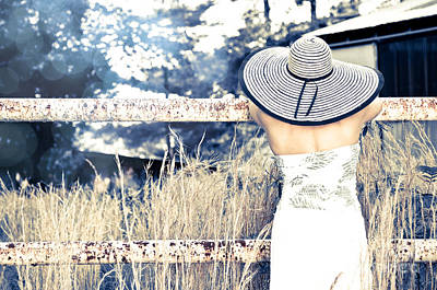 Hat And Fence Art Print by Jt PhotoDesign