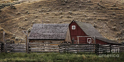 Photograph - Hat Creek  Ranch by Inge Riis McDonald