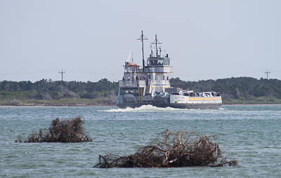 Seagull Photograph - Hatteras-ocracoke Ferry 4 by Cathy Lindsey