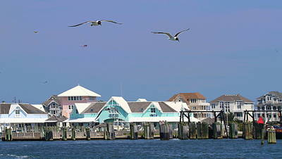 Seagulls Photograph - Hatteras Village And Seagulls by Cathy Lindsey