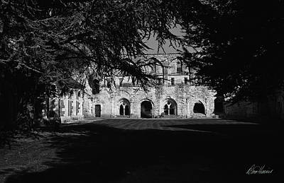 Photograph - Haunted Abbey by Diana Haronis