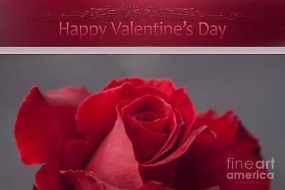 Rose Of Sharon Photograph - Hau'oli Ka La Aloha Kakou - Happy Valentine's Day by Sharon Mau