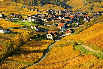 Photograph - Haut Rhin by John Galbo