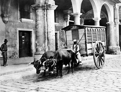 Photograph - Havana Meat Vendor, C1903 by Granger