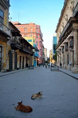 Photograph - Havana Street Scene 5 by Steven Richman