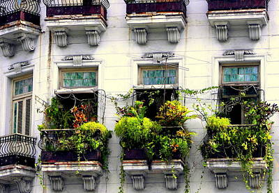 Antique Ironwork Photograph - Havana Windows by Karen Wiles
