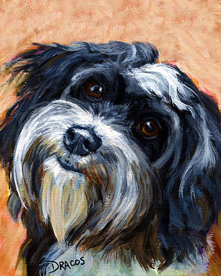 Havanese Dog Portrait Art Print by Dottie Dracos