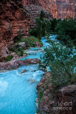Photograph - Havasu Creek by Jim McCain