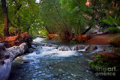 Havasu Creek Art Print