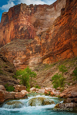 Havasu Creek Number 3 Art Print by Inge Johnsson