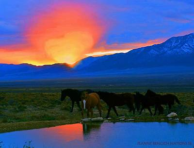 Photograph - Have A Heart For Wild Horses  by Jeanne  Bencich-Nations