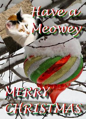 Photograph - Have A Meowey Merry Christmas by Phyllis Kaltenbach