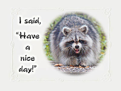 Have A Nice Day Photograph - Have A Nice Day Greeting Card - Smiling Raccoon by Mother Nature