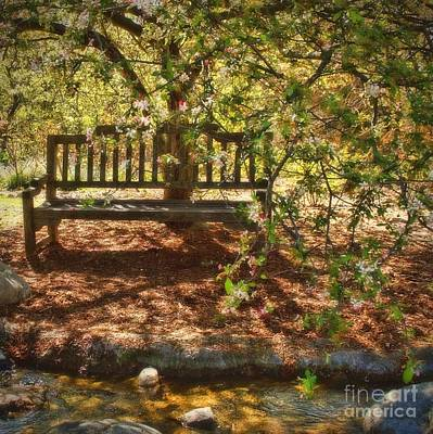 Photograph - Have A Seat by Peggy Hughes