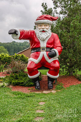 Photograph - Have You Seen My Elf? by Sue Smith