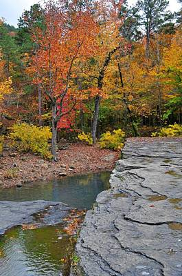 Photograph - Haw Creek Fall 2 by Marty Koch