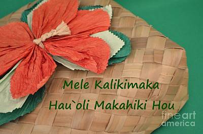 Photograph - Hawaii Christmas Gift Box by Mary Deal