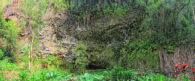 Hawaii Fern Grotto Art Print by C H Apperson