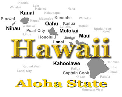 Photograph - Hawaii State Pride Map Silhouette  by Keith Webber Jr