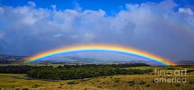 Twisty Photograph - Hawaii The Rainbow State by Edward Fielding