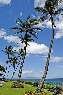 Landscape Photos Chad Dutson - Hawaiian beach on Maui 15 by Micah May
