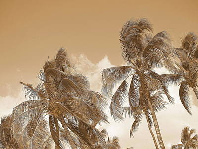 Hawaiian Breeze Art Print