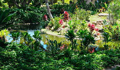 Photograph - Hawaiian Cultural Garden Honolulu Airport by Michele Myers