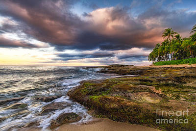 Photograph - Hawaiian Dream by Anthony Bonafede