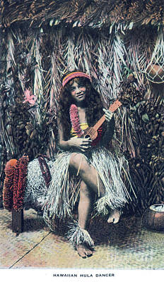 Bringing The Outdoors In - Hawaiian Hula Dancer by Dale Powell