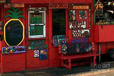 Photograph - Hawaiian Juice Bar by James Eddy