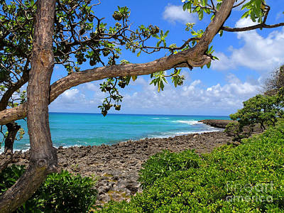 Art Print featuring the photograph Hawaiian Paradise by Kristine Merc