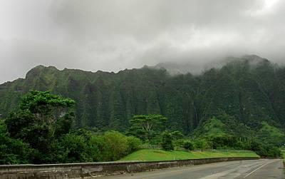 Hawaiian Rain Forest Art Print
