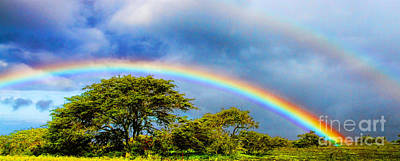 Photograph - Hawaiian Double Rainbow By Diana Sainz by Diana Raquel Sainz