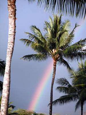 Photograph - Hawaiian Rainbow by Karen Nicholson