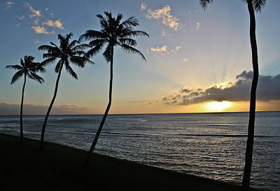 Photograph - Hawaiian Sunset by Joann Copeland-Paul