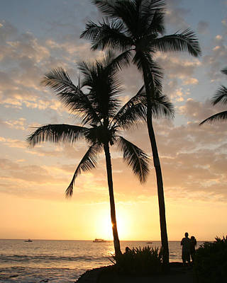 Photograph - Hawaiian Sunset by John Bushnell