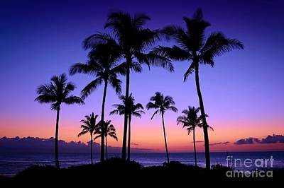 Photograph - Hawaiian Sunset by Patrick Witz