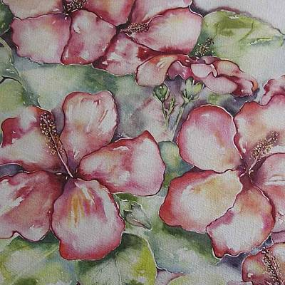 Painting - Hawaiin Hybiscus by Cheryl Miller