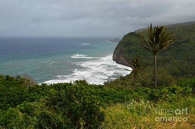 Big Island Photograph - Hawaii's Pololu Lookout by Greg Cross