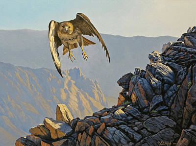 Hawk Painting - Hawk Above Beartooth Pass by Paul Krapf