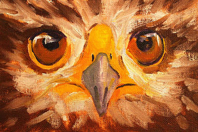 Painting - Hawk Eyes by Nancy Merkle