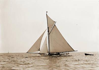 Hawk Drawing - Hawk, Hawk Yacht, Yachts by Litz Collection