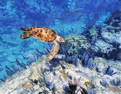 Salt Water Game Fish Painting - Hawksbill Turtle by Don  Ray