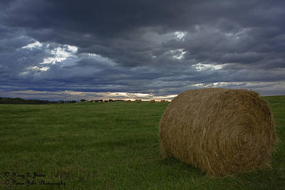 Photograph - Hay Bail by Hany J